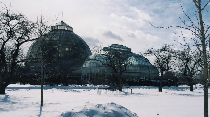 Belle Isle Stays Open Late For A Holiday Stroll - Opportunity Detroit Blog