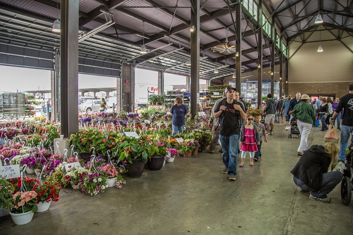 2019 Eastern Market Flower Day – Opportunity Detroit